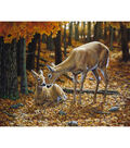 Novelty Cotton Fabric Panel 44\u0022-Autumn Innocence