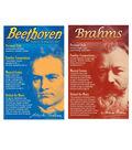 Composers Bulletin Board Set, 2 Sets