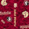 Florida State University Seminoles Fleece Fabric -Modern Block