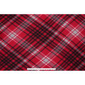 Blizzard Fleece Fabric-Kate Red & Gray Plaid