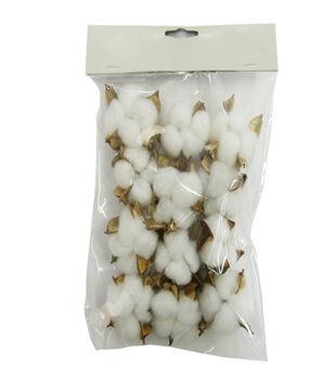 Blooming Autumn 12 pk Cotton Shells