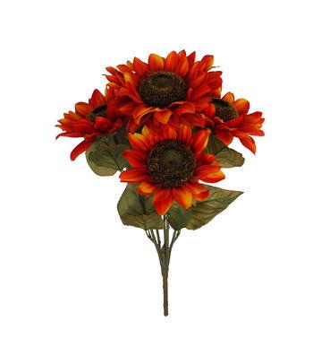 Blooming Autumn Sunflower Bush-Orange