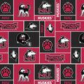 Northern Illinois Huskies Fleece Fabric -New Block