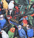 Novelty Cotton Fabric -Multicolored Parrots
