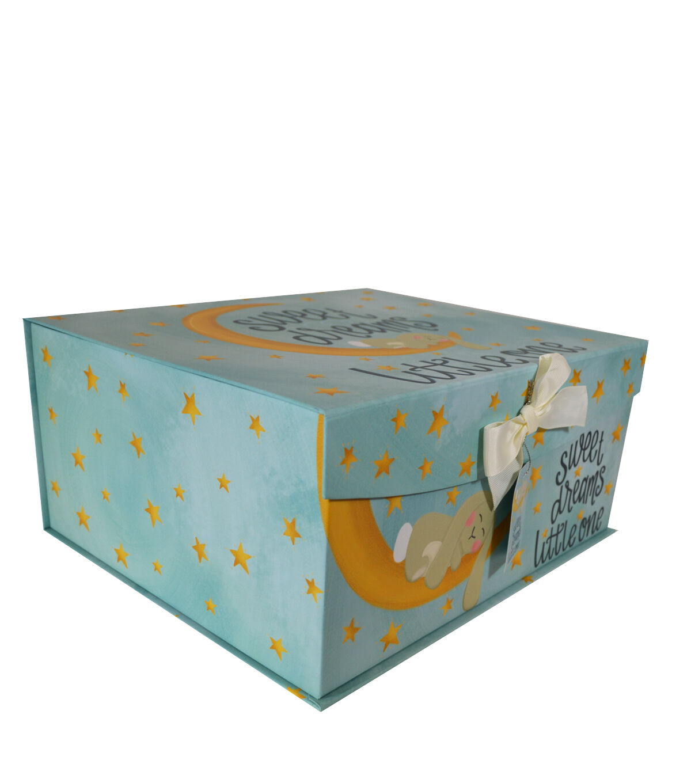 Organizing Essentials Large Fliptop Storage Box Sweet Baby
