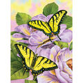 Royal Brush Junior Small Paint By Number Kit Swallowtail Butterflies
