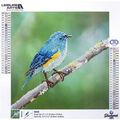 Leisure Arts Diamond Art Intermediate Kit 12\u0027\u0027X12\u0027\u0027-Blue Bird