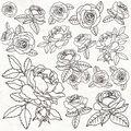 Kaisercraft Peachy 10 pk 12\u0027\u0027x12\u0027\u0027 Gloss Varnish Cardstock-Roses