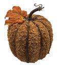 Blooming Autumn Large Husk Pumpkin-Orange