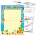 Class Rules Learning Chart 17\u0022x22\u0022 6pk