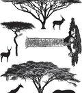 Darkroom Door 7\u0027\u0027X5\u0027\u0027 Cling Rubber Stamp-African Trees
