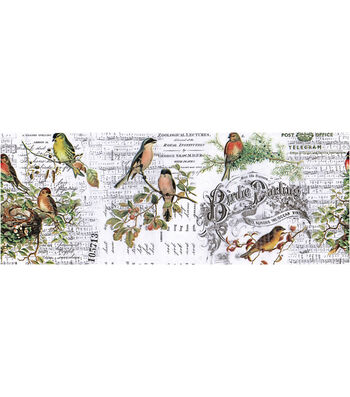 Tim Holtz Idea-ology Collage Paper 6''x6 yds-Aviary