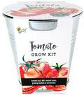 Buzzy Tomato DIY Grow Kit with Galvanized Metal Pail