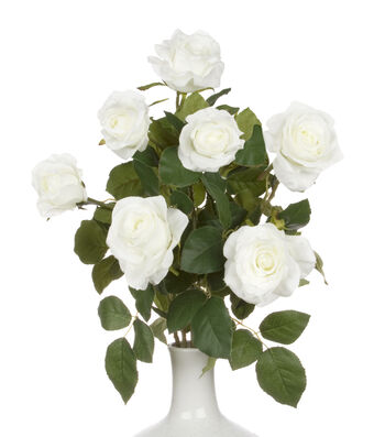 Bloom Room Christmas 21.5'' Mixed Rose Bush in Container-White