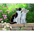 Collection D\u0027Art Diamond Embroidery/Printed/Gem Kit 38X38cm-Cat Morning
