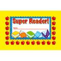 North Star Teacher Resource Super Reader! Punch Cards, 36 Per Pack