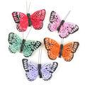 Midwest Designs 3\u0022 Monarch Butterflies 5pcs