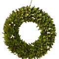 Blooming Autumn Wood Chip & Berry Wreath-Green & Ivory