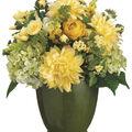 Bloom Room Luxe 16\u0027\u0027 Dahlia, Hydrangea & Freesia In Ceramic-Yellow