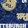 University of Pittsburgh Panthers Fleece Fabric -Digital Camo