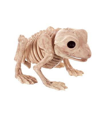 The Boneyard Frog Bones
