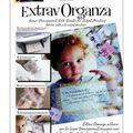Extrav Organza Silk For Inkjet Printing