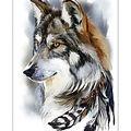 Collection D\u0027Art Diamond Embroidery/Printed/Gem Kit 27X38cm-Wolf Spirit