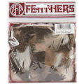 Feather Assortment .25 Ounces-Guinea Hen/Biots/Satinettes/Coquille