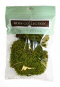 Mood Moss Preserved