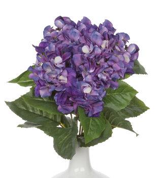 Bloom Room 22'' Hydrangea Bush-Dark Purple