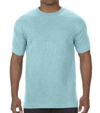 Adult Comfort Colors T-shirt-Large
