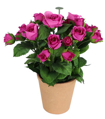 Fresh Picked Spring 11'' Potted Roses-Fuchsia