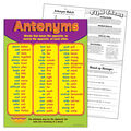 Antonyms Learning Chart 17\u0022x22\u0022 6pk