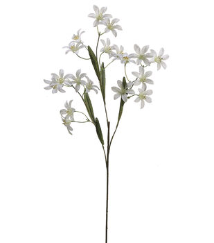 "Bloom Room 24"" Tweedia Spray x3-Cream"