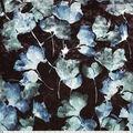 Ember Knit Prints Stretch Panne Fabric-Dark Teal Leaf