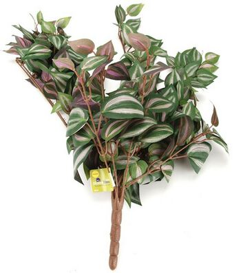 "28"" Wandering Jew Bush-Green/Purple"
