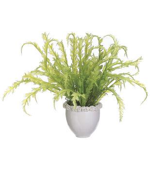 Soft Ferns in White Ceramic Vase 19''