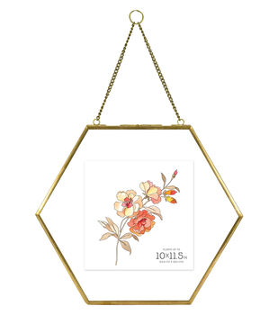 Pressed Glass & Metal Hexagonal Float Picture Frame 10''x11.5''-Brass