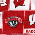 University of Wisconsin Badgers Fleece Fabric -Block