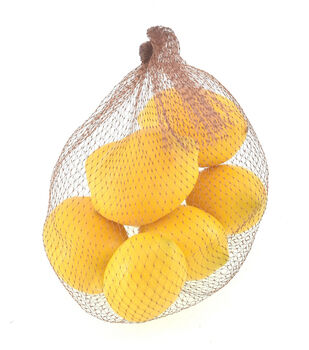 Fresh Picked Spring Lemons in Mesh Bag