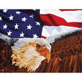 Diamond Embroidery Facet Art Kit 25.5\u0022X35.5\u0022-Bald Eagle & Flag