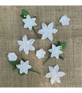 49 And Market Stargazers Paper Flowers 9/Pkg-Simply White