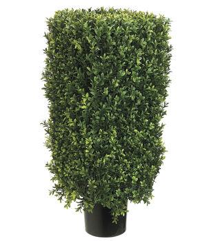 Rectangular Boxwood Topiary in Plastic Pot 30''