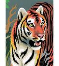 Royal Brush 5\u0027\u0027x7\u0027\u0027 Paint By Number Kit-Tiger
