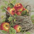 RIOLIS 10.75\u0027\u0027x10.75\u0027\u0027 Diamond Mosaic Kit-Ripe Apples