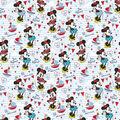 Cricut Premium Vinyl Patterned Sampler-Mickey & Friends Set Sail