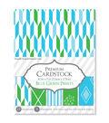 Darice Premium 8.5\u0027\u0027x11\u0027\u0027 Cardstock Paper Pack-Blue & Green