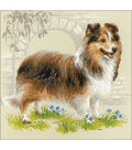 RIOLIS 9.75\u0027\u0027x9.75\u0027\u0027 Counted Cross Stitch Kit-Sheltie Dog