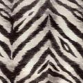 Waverly Upholstery Fabric 54\u0022-Tigress/Zinc