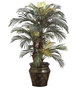 Phoenix Palm in Metal Container 4'-Green